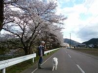 2013_0404_160503-P1100365.jpg