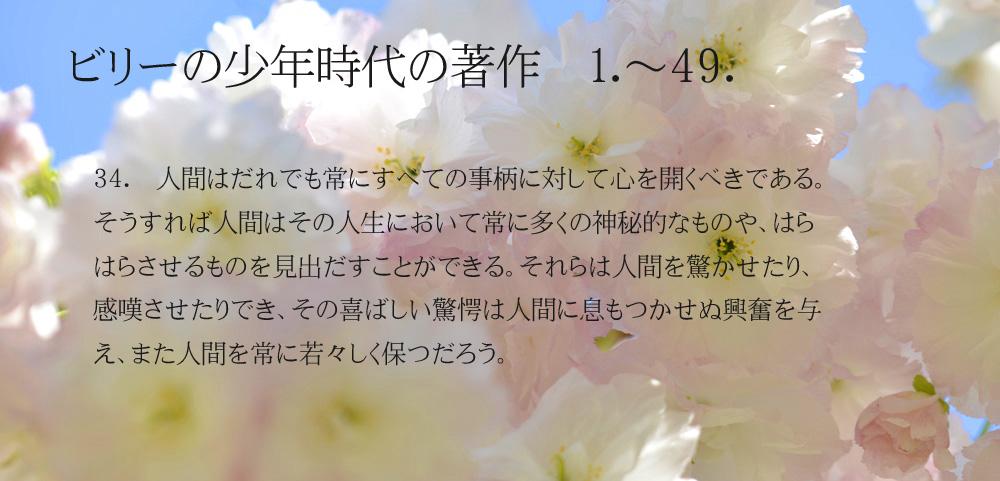 _DSC2904-11-1000-34.jpg