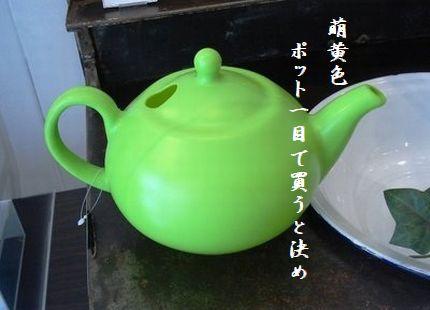 ポット(グリーン)4萌黄色