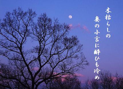 つき(春の月)妻の小言