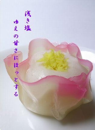 かん椿(和菓子)浅き塩