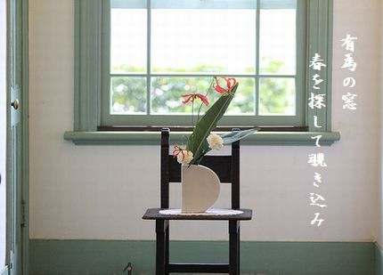 はるの花有為の窓