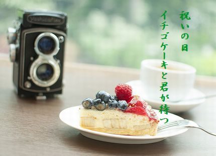 ケーキとカメライチゴケーキ