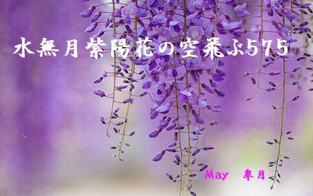 フジの花皐月トップ