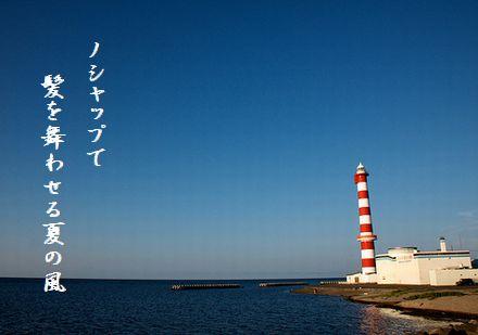 ほっかいどうノシャップ岬夏の風