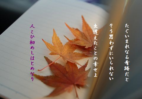 しおり(紅葉)48文字
