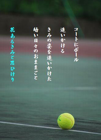 テニスボール48文字