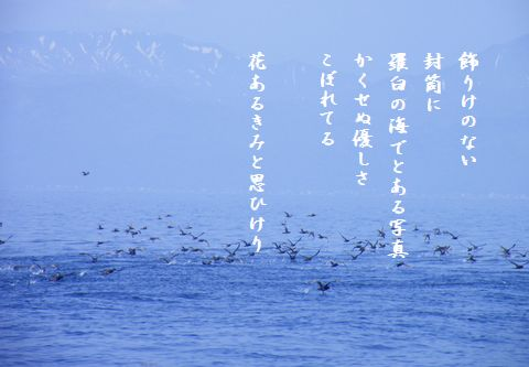 ほっかいどう羅臼の海48文字