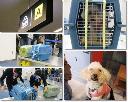羽田空港のミラ