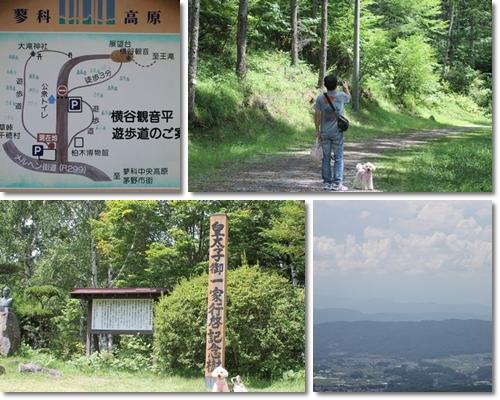 横谷観音遊歩道_1