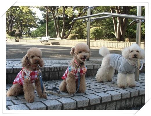 横山公園集合写真