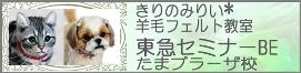 s20120326bb2.jpg
