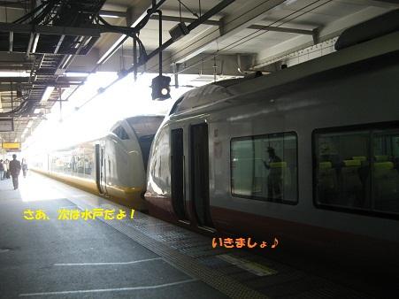 IMG_0381_20120522202648.jpg