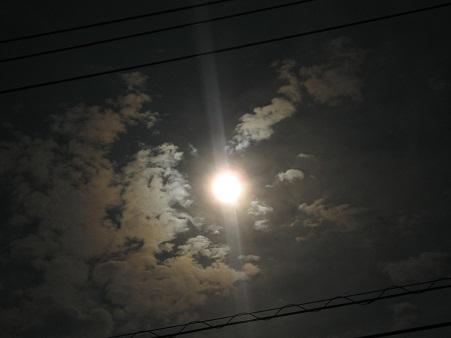 IMG_0415a_20120521203928.jpg