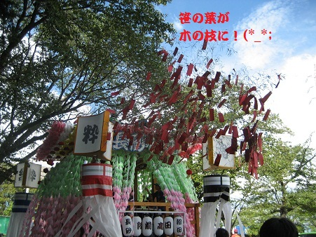IMG_0497_20120916225650.jpg