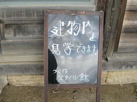 IMG_0517_20120927214116.jpg