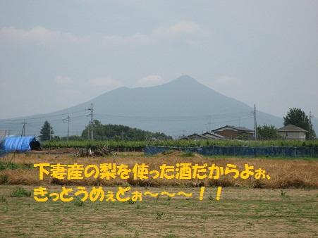 IMG_0878_20121018212749.jpg