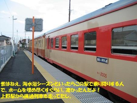 IMG_1771_20120816204821.jpg