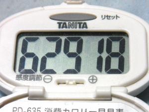 130825-271歩数計(S)