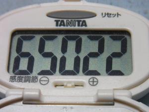 130901-251歩数計(S)