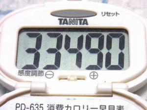 130907-261歩数計(S)