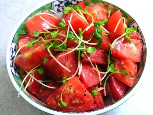 130908-231トマトとカイワレのサラダ(S)