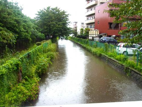 130915-201近所の川(S)