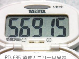 130922-214歩数計(S)