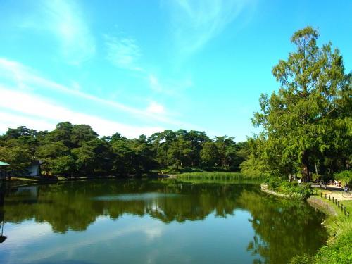 130928-202大宮公園の池(S)