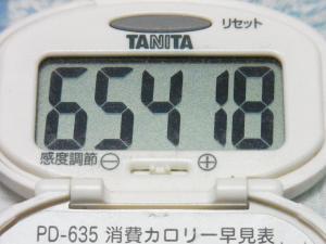 131006-251歩数計(S)