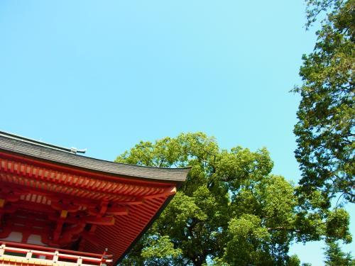 131014-201氷川神社の空(S)