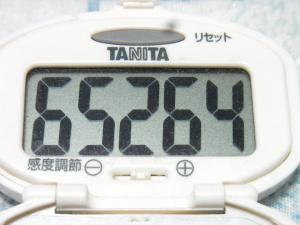 131020-251歩数計(S)