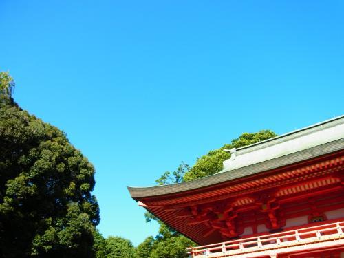 131027-201氷川神社(S)