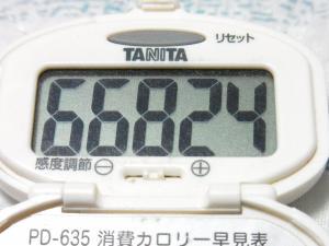 131027-251歩数計(S)
