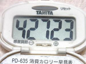 141112-251歩数計(S)