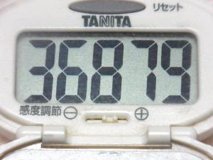 141115-251歩数計(S)