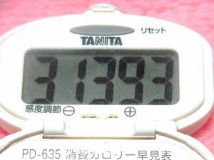 141122-291歩数計(S)