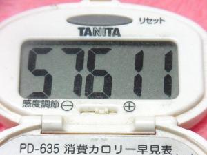 141123-291歩数計(S)