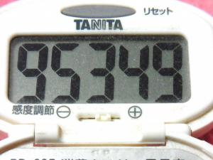 141124-291歩数計(S)
