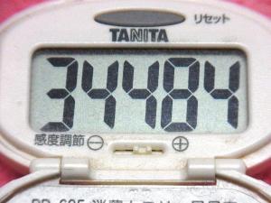 141129-291歩数計(S)