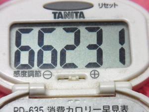 141207-291歩数計(S)