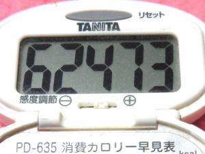 141214-291歩数計(S)