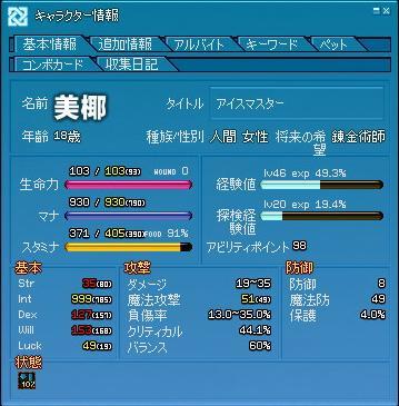 mabinogi_2011_08_20_031.jpg