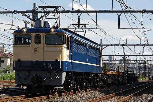 IMGP5544.jpg