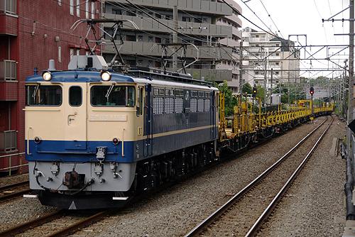 IMGP6520.jpg