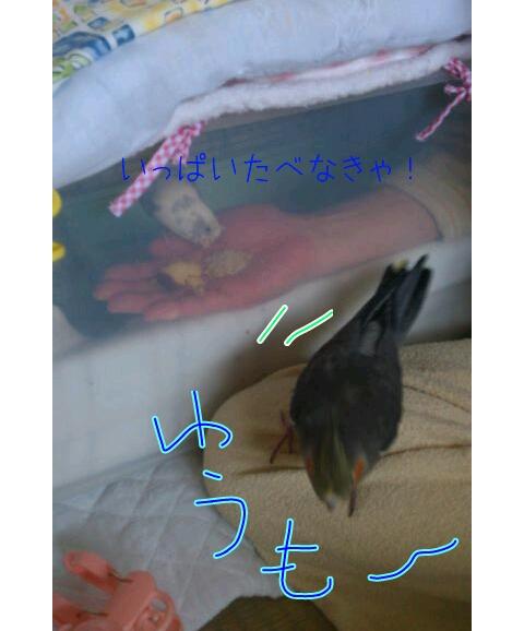 20130306-214023.jpg