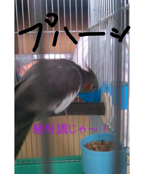 20130308-175947.jpg