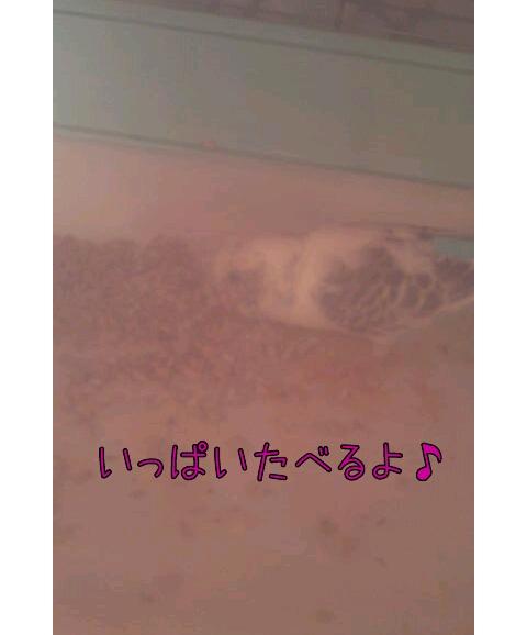 20130328-215347.jpg