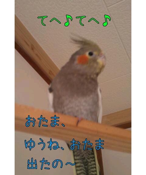 20130426-234330.jpg