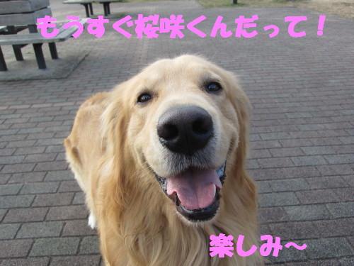 IMG_8074.jpg